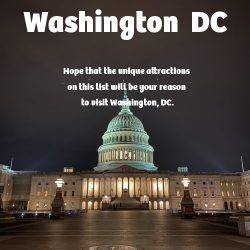 The Ultimate Travel Guide to Washington  DC
