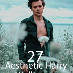 27 Aesthetic Harry Styles Wallpaper Ideas