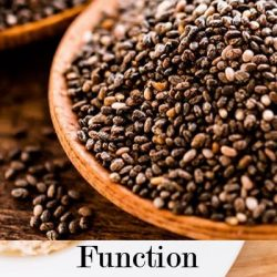 Chia seeds function